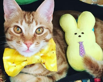 Custom Pet Bow Tie