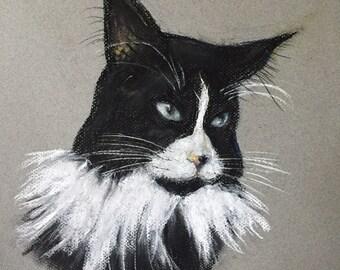 Cat Pet PORTRAITS CUSTOM - CATS