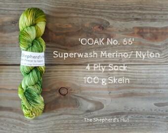 Superwash Merino/Nylon 75/25 Sock yarn 100 g OOAK No. 66