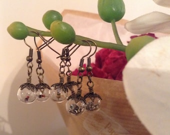 Mini Glass Vile Zenor Diode Handmade Earrings