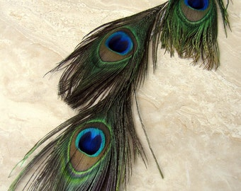 Peacock Feather Earring - Extra Long Single Feather Earring - Feathered Soul