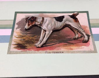 Fox terrier 3D card