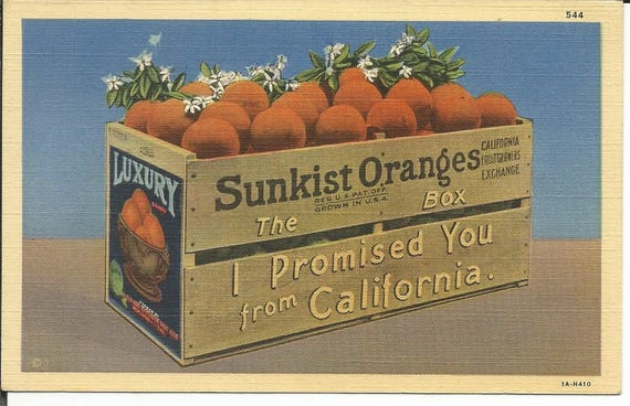 Vintage greetings from california sunkist oranges postcard like this item m4hsunfo Gallery