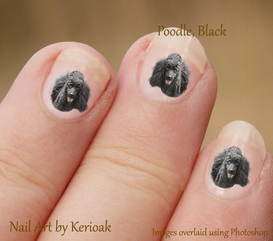 Poodle Nail Art Dog Nail Art Stickers Black Poodle Nail