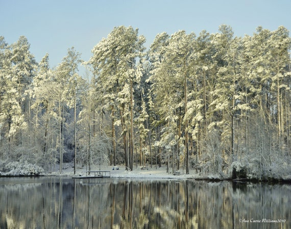 Snowy morning on a country pond with icy trees (canvas)