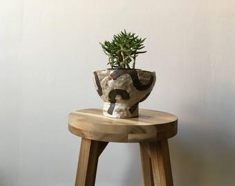 Sloppy noodles planter