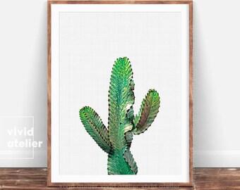 Cactus,  Cactus Print, Watercolor Cactus, Cacti, Cactus Photography, Most Popular, Cactus Plant Print, Succulent Print, Cactus Wall Art