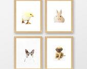 Watercolor Prints, Animal...