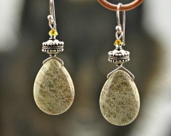 Crinoid Fossil Briolette Sterling Silver dangle Earrings