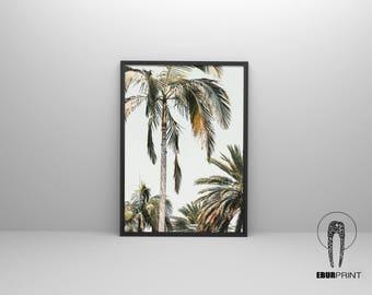 Palm Tree Print, Printable Instant Download, Beach Decor, Wall Art Print, Aqua Blue, Coastal, Clouds, Minimalist Print, Modern Beach