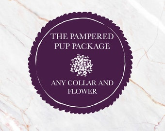 Pampered Pup Package (Any Collar And Rosette Flower)