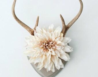 Decorated Antlers, Deer Antler Decor, Flower Antler, Antler Art, Antler Wall Hanging, Deer Antler w/Flowers, Antler Flower Art, Deer Decor