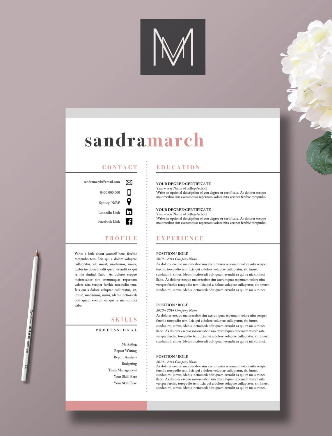 professional resume mod u00e8le 2 page cv lettre de motivation