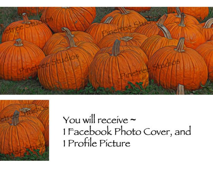 Pumpkin Patch ~ Facebook Blank Cover Photo and Profile Picture