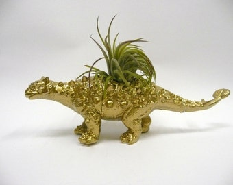 Gold Ankylosaurus Dinosaur Planter with Air Plant // dino planter // gift for her // gift for him