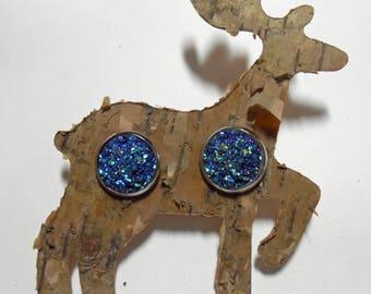 Resin Druzy Earrings Titanium Hypoallergenic Birch Bark Bird Deer
