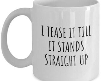 Funny Hair Stylist Gift - Hairdresser Mug - I Tease It Till It Stands Up