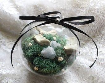 Vertebrae Terrarium Ornament // oddities // blue calcite // crystals // taxidermy