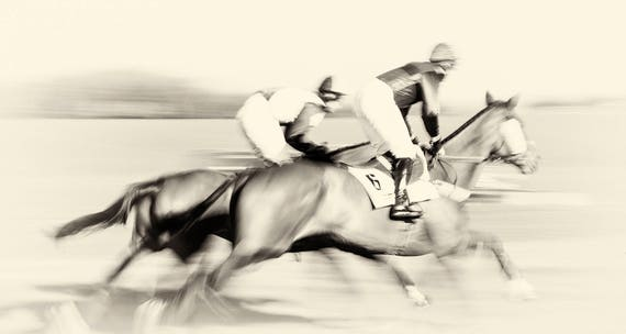"Horse Racing Prints, ""Day At The Races"", Horse Prints, Equine Prints, Black and White Prints, Horse Jumping Art, Animal Prints"