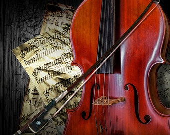 Cello Art, Cello Bow, Acoustic Stringed Instrument, Musical Instrument, Classical Music, Sheet Music, Concert Music, Music Photograph