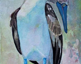Blue Footed Booby,Original Watercolor Painting,Galapagos,Watercolor Painting,Animal Art,Prints,Giclee Prints,Free Shipping,Carol Lytle,#102