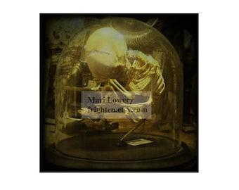 Macabre Halloween Decor Child Skeleton 5x5 Inch Oddities Photography Print