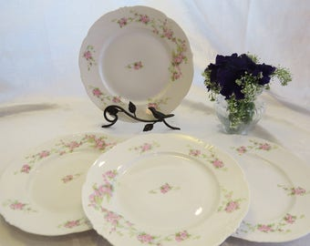 Pink Floral Habsburg Austrian China Dinner Plates & Pink china plates | Etsy