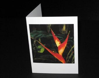 Arabesque Greeting Card