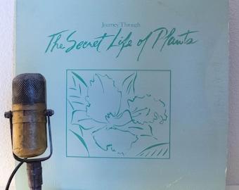 """Stevie Wonder 1970s New Age Soundtrack Score LP """"The Secret Life Of Plants"""" (1979 Motown w/""""Send One Your Love"""")"""