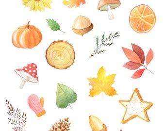 Autumn Watercolour Decorative Planner Stickers for Horizontal, Vertical ECLP, BuJo, TN, Kikki.K Filofax, Happy Planner etc