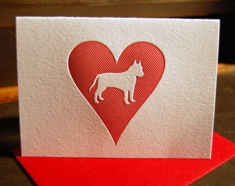 Heart: Pit Bull, single letterpress card