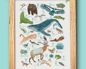 "ABC Animal Print - 10x13 print - baby kids nursery art, California whale fox quail ""California Animals"""