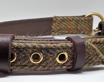 Green Harris tweed Brown leather Martingale dog collar with solid brass hardware