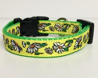 """3/4"""" wide Yellow Flower Dog Collar - Garden - Daisy- Spring - Summer - Cute - Dog Gift - Pet -"""