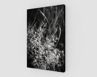 Micro Foliage, Canvas, 1:50 Limited Edition / home decor / decoration / photo / photography / black and white /