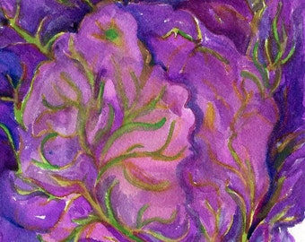 Purple Cabbage original watercolor painting, Small Vegetable Painting, Kitchen Wall Art, 5 x 7,  cabbage illustration