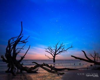 As You Were // Botany Bay Edisto Island Beach Boneyard Beach / South Carolina Wall Art Photography Sunset