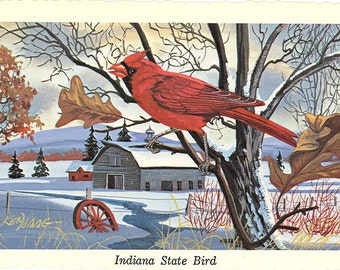Indiana State Bird - Cardinal Redbird Vintage Postcard Signed Artist Ken Haag (unused)