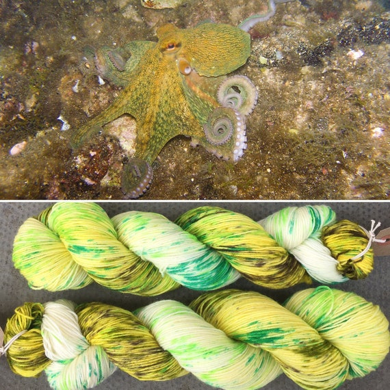 Tentacles! speckled cephalopod theme indie dyed merino nylon sock yarn
