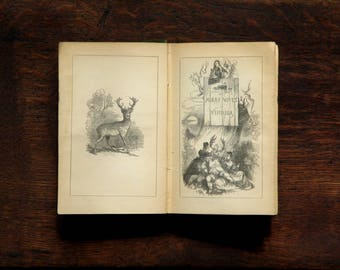 Antique Shakespeare book: The Merry Wives of Windsor; Twelfth Night; As You Like It; Measure for Measure by William Shakespeare