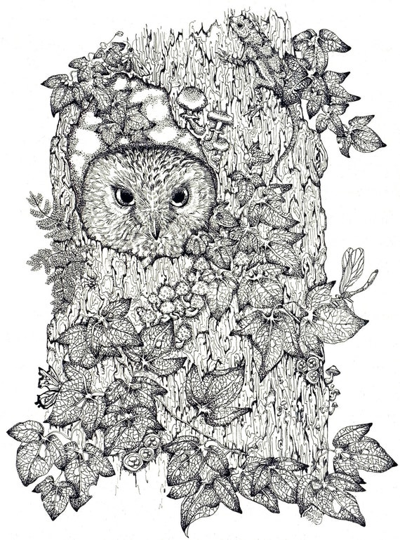 Owl Art ,Ink Illustration Art Print Woodland Art Print