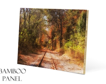 Bamboo Wall Art-Wood Panel Art-Railroad Tracks Photograph-20x30-Photo Mounted on Wood-Fine Art Photography-Woodland Wall Decor-Autumn Art