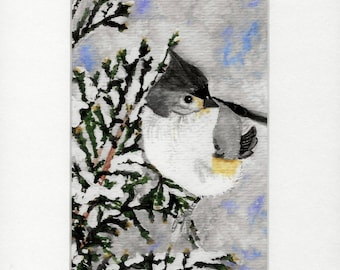 Tufted Titmouse Bird PRINT 5x7 in a White 8x10 Mat - No. 428 Tufted Titmouse