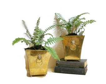 Pair Vintage Brass Footed Planters, Lions Head Planters, Brass Planters, Indoor Brass Planters, Brass Decor