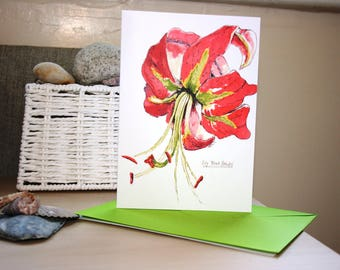 Red Lily Flower, 'Black Beauty' Greetings Card Print