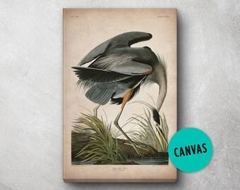 Audubon Bird Print, Canvas, Heron Print, Birds of America, John James Audubon, Large Print, Wall Art, Pink Flamingo, Large wall art