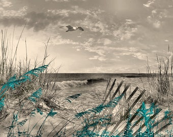 Teal Brown Coastal Theme Bathroom, Bedroom, Living Room Home Decor Wall Art Picture
