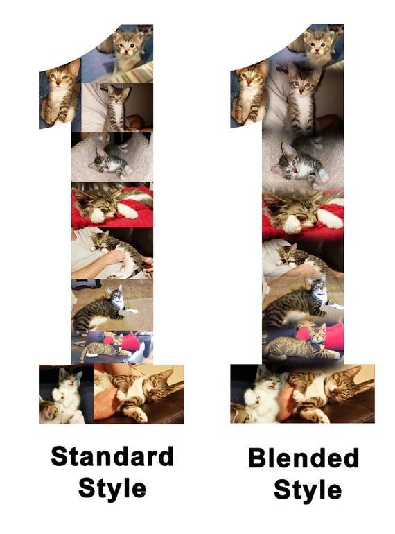 Custom Photo Collage Letter & Custom Photo Collage Frame make