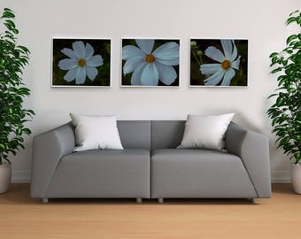 Set of 3 White Flowers - Digital Photography Print - Grainy Vintage-y Effect - Instant Download - Botanical Photography