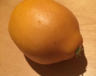 Disguised Lemon Geocache